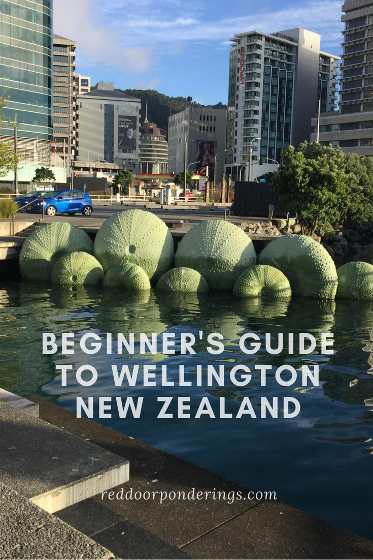 beginners guide to wellingtonNew Zealand1